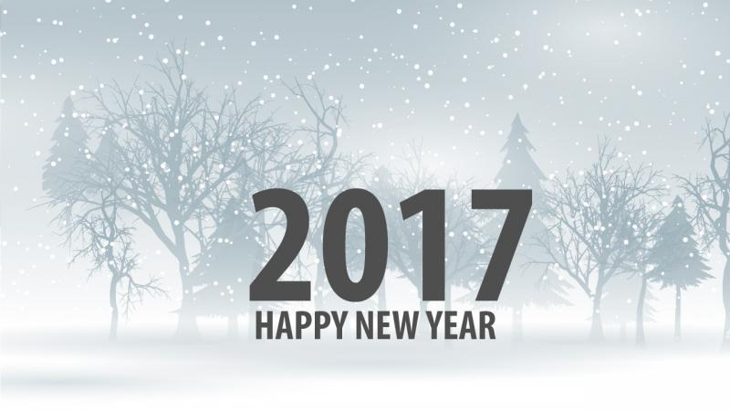 Happy New Year 2017 Wallpapers Images Pictures hd2